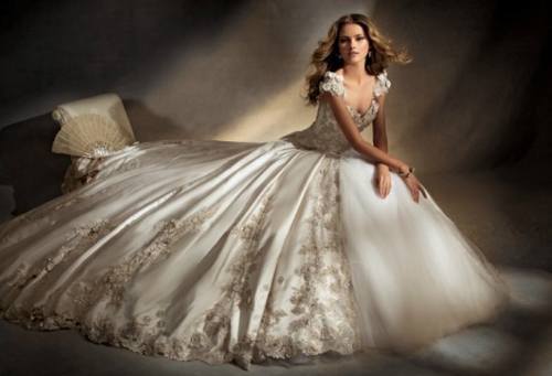 The elegant v neck court train wedding dress