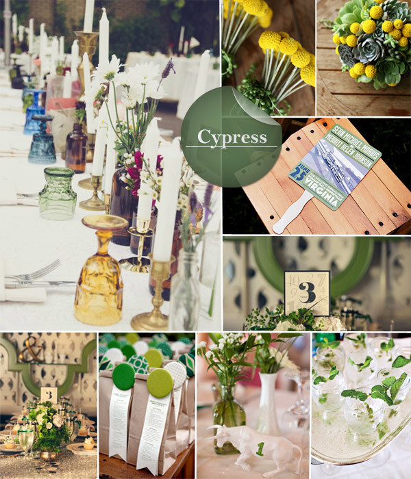 Cypress wedding background