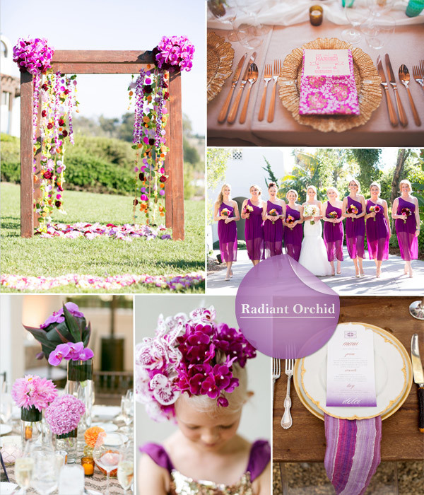 Radiant Orchid wedding background